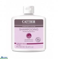 Cattier shampoo bamboo kuiville hiuksille 250ml