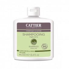 Cattier shampoo green clay rasvoittuvalle hiuspohjalle 250ml