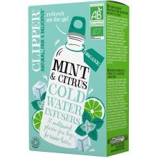 Clipper Minttu & Citrus kylmähauduke luomu 27g Cold Brew