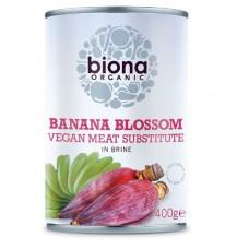 Biona - Banaanin kukinto suolavedessä