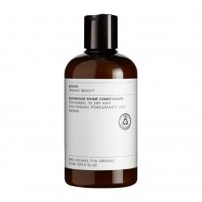 Evolve Superfood Hoitoaine 250ml normaalit/kuivat hiukset