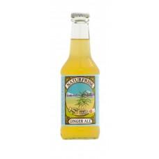 Naturfrisk Limonade Ginger Ale 250ml luomu