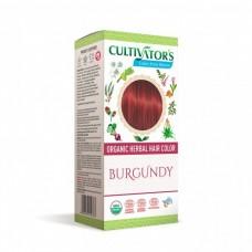 Cultivator´s kasviväri Burgundy